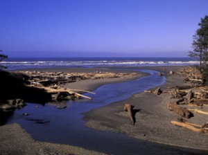 Kalaloch Beach, Olympic National Park, Washington
