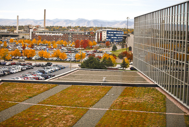 Photo taken by MSU Denver