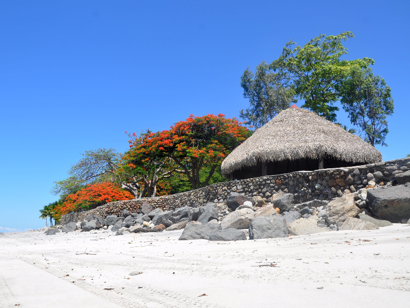 Visit Indigenous Embera Island