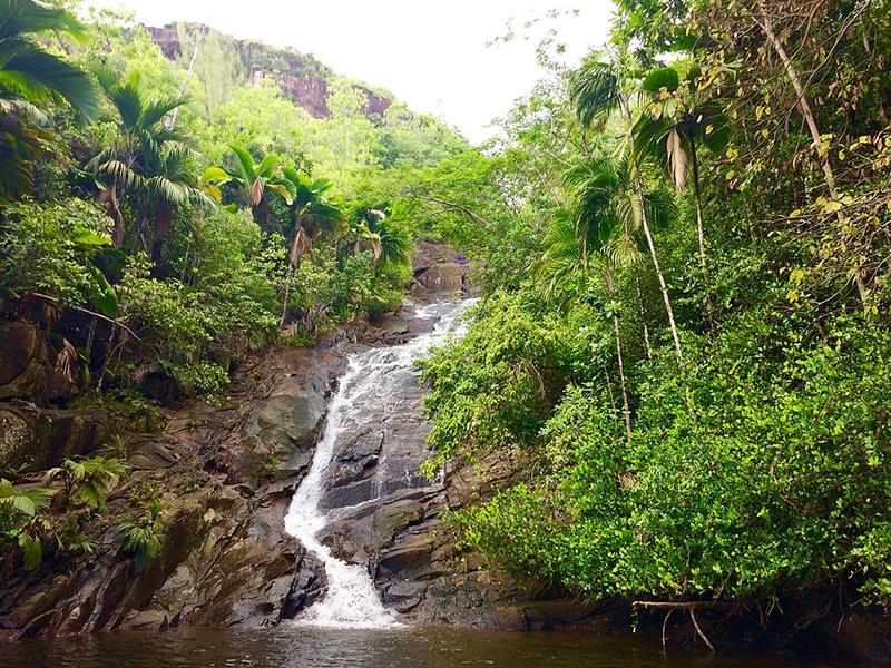 Praslin Waterfall in Seychelles
