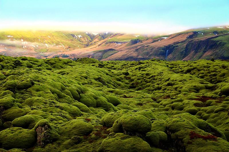 Laugavegurinn/Fimmvörðuháls Pass, Iceland
