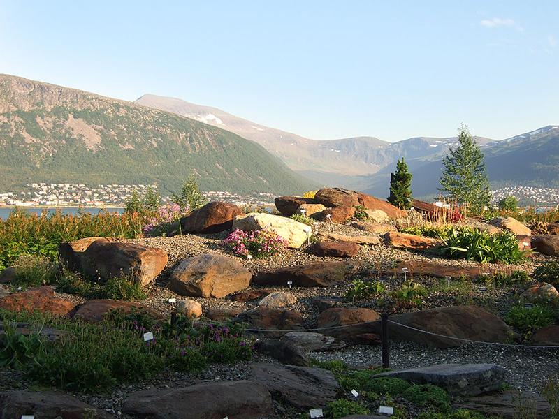 Exploring the Arctic-Alpine Botanical Garden