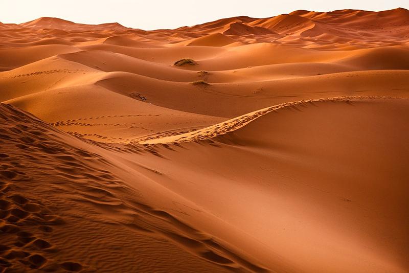 The Sloppy Sand Dunes
